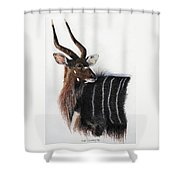 Nyala Bull Shower Curtain