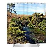 Nz Bridge Shower Curtain