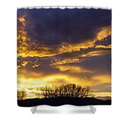 O Glorious Day Shower Curtain