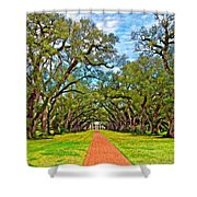 Oak Alley 3 Oil Shower Curtain