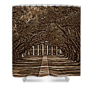 Oak Alley Bw Shower Curtain