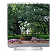 Oak Alley Courtyard Shower Curtain