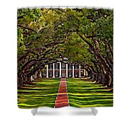Oak Alley II Shower Curtain by Steve Harrington