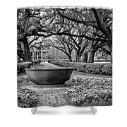Oak Alley Plantation Landscape In Bw Shower Curtain