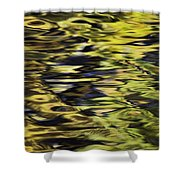 Oak And Maple Trees Reflections In Shower Curtain