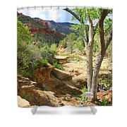 Over Slide Rock Shower Curtain