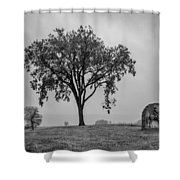 Oak Ridge 2698 Shower Curtain