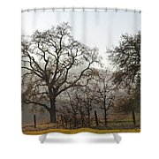 Oak Sillouette Shower Curtain