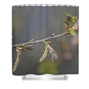 Oak Sway Shower Curtain