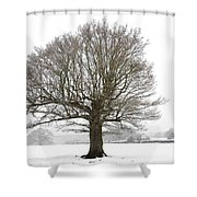 Oak Tree And Farm House Shower Curtain