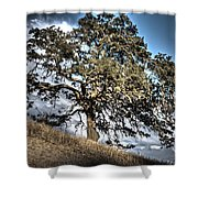 Oak Tree And Moon Shower Curtain