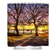 Oak Trees At Sunrise Shower Curtain
