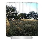 Oaks At The Plateau Shower Curtain