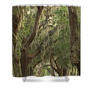 Oaks Of Georgia Shower Curtain