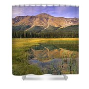 Observation Peak And Coniferous Forest Shower Curtain