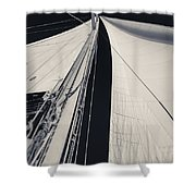 Obsession Sails 2 Black And White Shower Curtain