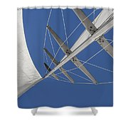 Obsession Sails 7 Shower Curtain