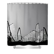 Obstacles  Shower Curtain