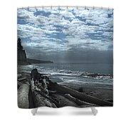 Ocean Beach Pacific Northwest Shower Curtain