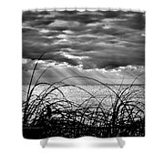 Ocean Rays Black And White Shower Curtain