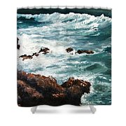 Ocean Rocks  Shower Curtain