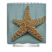 Ocean Star Fish Shower Curtain