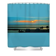 Ocean Sunset With Birds Shower Curtain