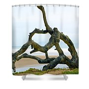 Oceano Dunes After The Storm II Shower Curtain
