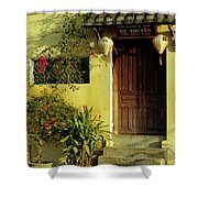 Ochre Wall 01 Shower Curtain