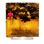 Ochre Wall Silk Lantern 01 Shower Curtain