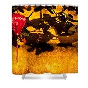 Ochre Wall Silk Lantern 02 Shower Curtain
