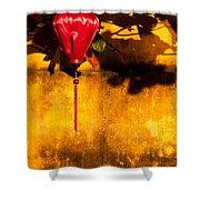 Ochre Wall Silk Lantern 03  Shower Curtain