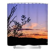 Ocotillo Sunset Shower Curtain