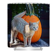 October Kitten #1 Shower Curtain