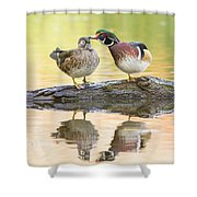 October Love Story Shower Curtain