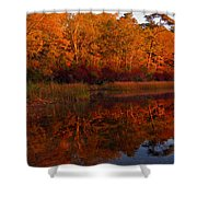 October Mirror Shower Curtain