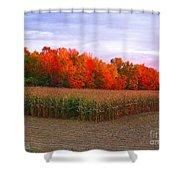 October Sunset On The Autumn Woods Shower Curtain