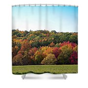 Octobers Best Shower Curtain