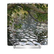 Ode To Monet Shower Curtain