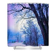 Of Dreams And Winter Shower Curtain