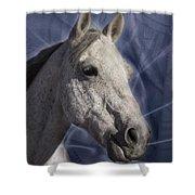 Of Kelpie Lullabies Shower Curtain