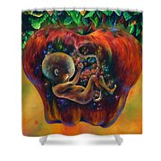 Of Knowledge Shower Curtain by Kd Neeley