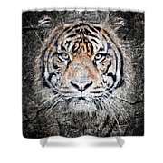 Of Tigers And Stone Shower Curtain