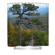 Of Time And Tenacity Shower Curtain