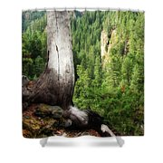 Off The Hiking Trail Shower Curtain
