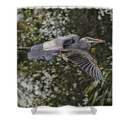 Off To The Nest 2012 Shower Curtain