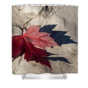 Oh Canada Maple Leaf Shower Curtain