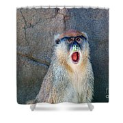 Oh Did You See That? Shower Curtain