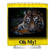 Oh My Shower Curtain by Robert L Jackson