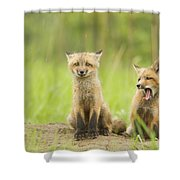 Oh No - Not More Rain Shower Curtain
